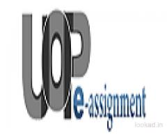 FIN 571 Connect Problem Via UOP E Assignments